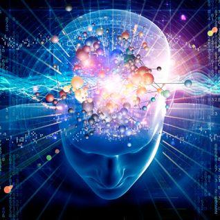 Mind Project - Timothy D.