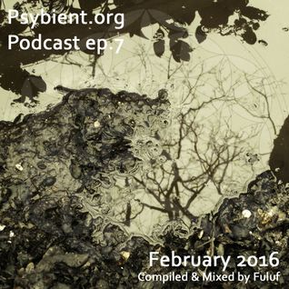 psybient.org podcast episode 07 - February 2016 mixed by Fuluf
