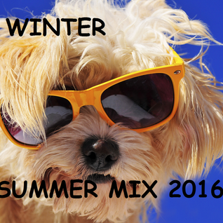 Winter Summer Mix 2016