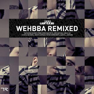 Wehbba - Full Circle Remixes (promotional mix)