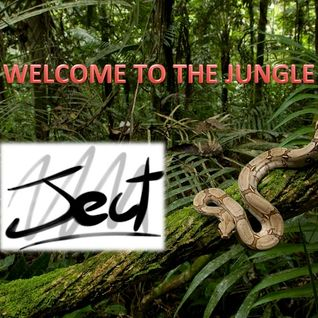 Welcome to the Jungle!! Ject72 Set