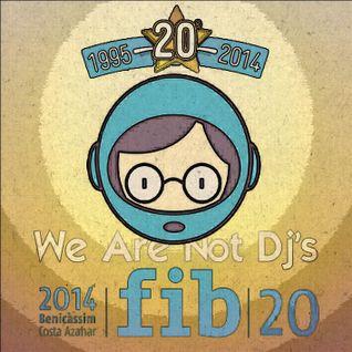 Fiber Fib 20 (Benicassim 2014)