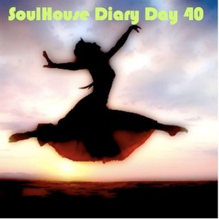 SoulHouse Diary Day 40