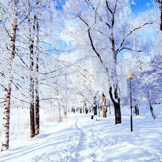 Hidden Paths Vol. 3 (January 2013 Mix)