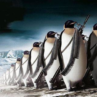 Pingu's War: Autumn 2012