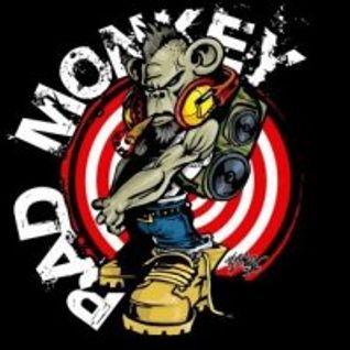 Bad Monkey Presents- Digital Dub Plates Volume One