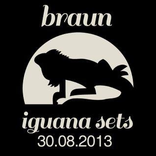Braun Iguana Sets: 30.08.2013