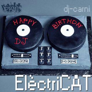 ElèctriCAT