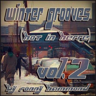 Winter Grooves (Hot In Herre) Vol. 2
