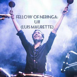 Fellow of Neringa - UJI (Luis Maurette) 2016.11.30