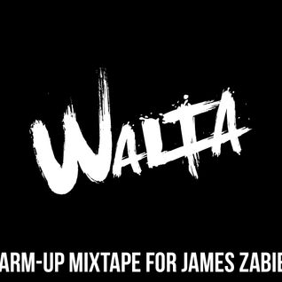 Walta Promo Mixtape for James Zabiela