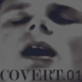 COVERT.01-from the inside