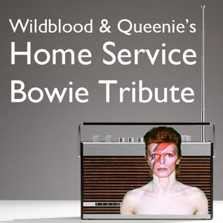 Wildblood & Queenie's Home Service Bowie Mix