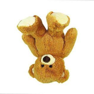 Enn - teddyhenger mix 150906 ( mackohullas archiv )