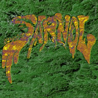 SARNOL LIVE FULL SET 10-11-2012