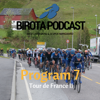 Program 7: Tour de France II