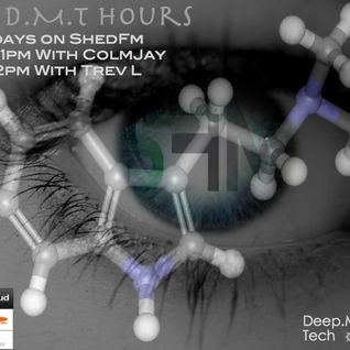 The D.M.T. Hours On ShedFM Online Music Station 16/10/12