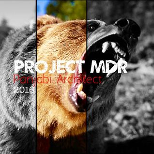 Project MDR - Panjabi Architect (Raw Construction)