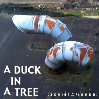 A Duck in a Tree 2012-08-11 | Written on Seven Leaves with a Stalk Dipped in Sap