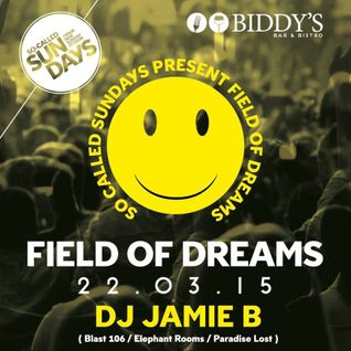 Jamie B's Field Of Dreams Happy Hardcore Live @ Biddy's Bar & Bistro West Belfast 22.03.15