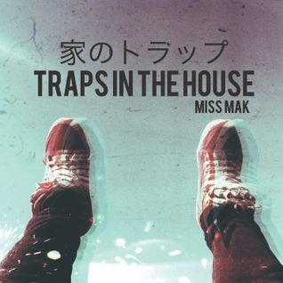 Traps In The House