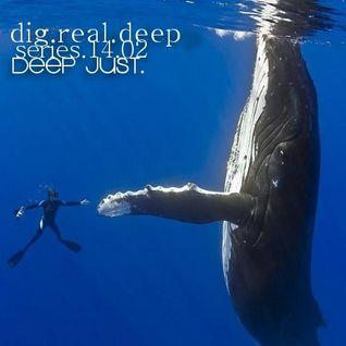 DigRealDeep_episode_1402