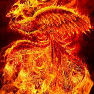 Dj Chilly the rise of the phönix
