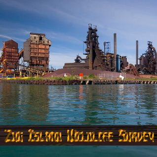 Zug Island Wildlife Survey [10.2.16]