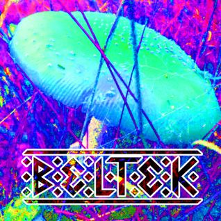 Winick - BelTek @ Chill-Out stage [27_09_2014]