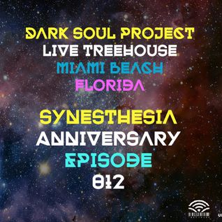 Dark Soul Project @ Treehouse Miami 24 07 2015 @ Synesthesia Aniversary Episode 012 Part 2