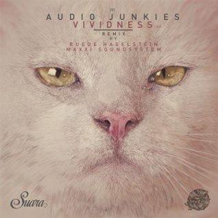 Audio Junkies & Sahar Z- Lalitha (Original Mix)