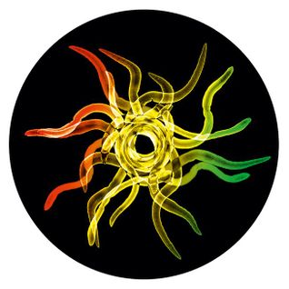Reggae Revolution 11-12-13
