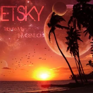 Netsky Tribute Mix (2011)