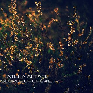 Atilla Altaci - Source of Life #12