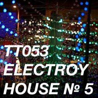 TT053 - ElecTroy House № 5