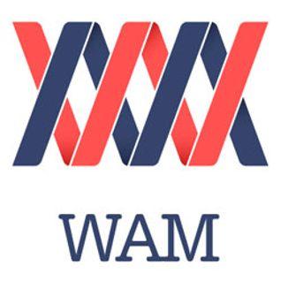 WAM L'émission - 8 janvier 2016