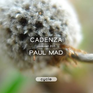 Cadenza Podcast | 201 - Paul Mad (Cycle)