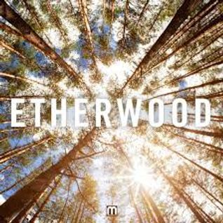 Etherwood mix