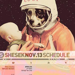 Shesek_Bar-2/11/13