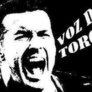 A voz do Torcedor_28_10_2013