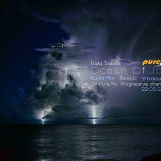 Juan Sando - Ocean of Joy 021 [oct 9th, 2013] on pure.fm