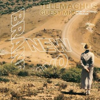 Guest Mix - Telemachus 'How To Attract A Pelican'