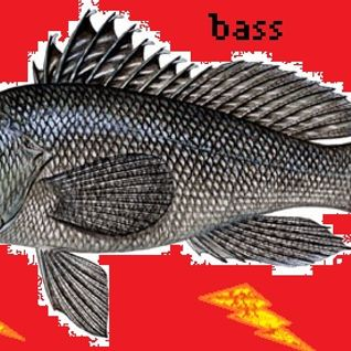 It's All About The Bass* OrangaDang
