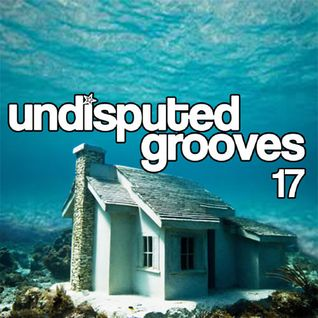 Undisputed Grooves - vol 17 - (Deep house mix by Damien Jay)
