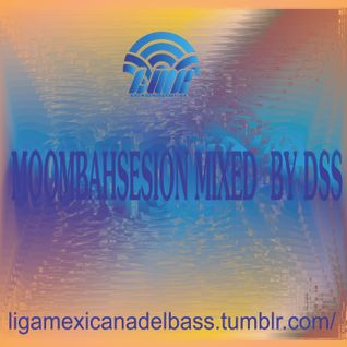 Dubsoulsystem_-_Moombahsession