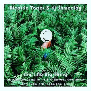 Ricardo Torres & dj ShmeeJay - Ain't No Big Thing - 2016-08-25