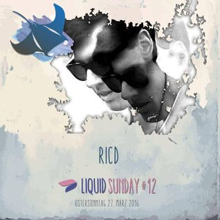 RICD @ Liquid Sunday #12 - 27.03.16