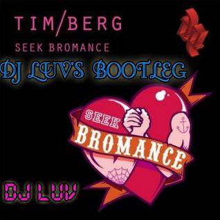 SEEK BROMANCE (Tim Berg) - DJ LUV'S BOOTLEG