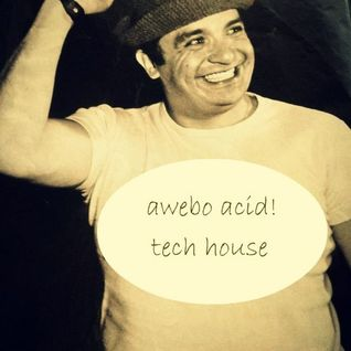 Acidbeat @ tech house coyochautli sessions 2014