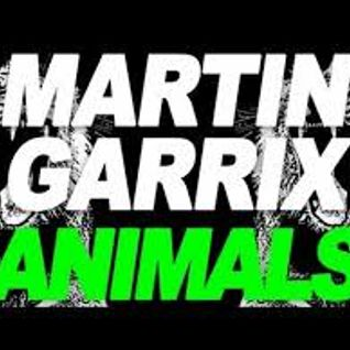 Martin Garrix vs. Tony Romera-Pandor Animals(dj Tunner bootlegmix,Club Awakenings).